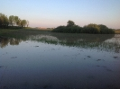 Hochwasser 2013_2