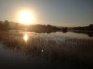 Hochwasser 2013_31