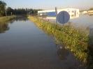 Hochwasser 2013_36