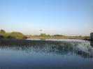 Hochwasser 2013_47