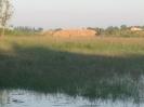 Hochwasser 2013_55